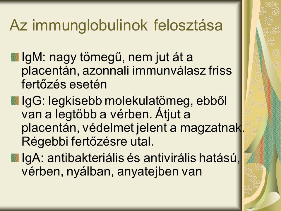 Az immunglobulinok felosztása IgM: nagy tömegű, nem jut át a placentán, azonnali immunválasz friss fertőzés esetén IgG: legkisebb molekulatömeg, ebből van a legtöbb a vérben.