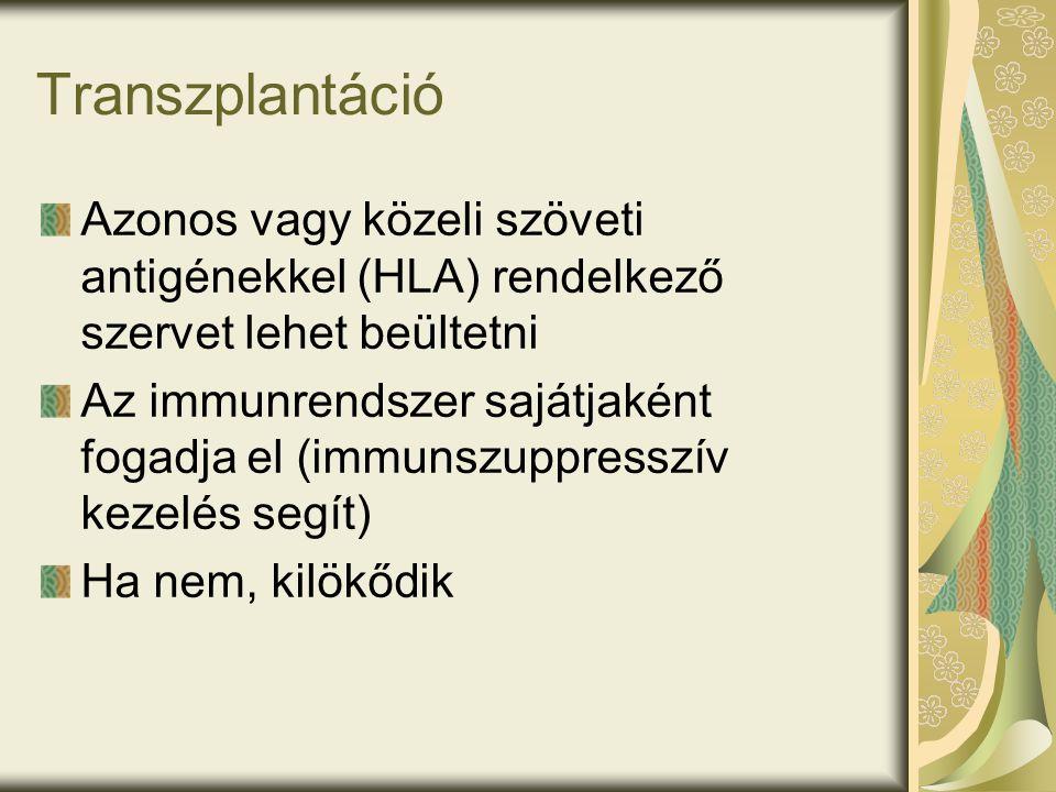 Transzplantáció Azonos vagy közeli szöveti antigénekkel (HLA) rendelkező szervet lehet beültetni Az immunrendszer sajátjaként fogadja el (immunszuppresszív kezelés segít) Ha nem, kilökődik