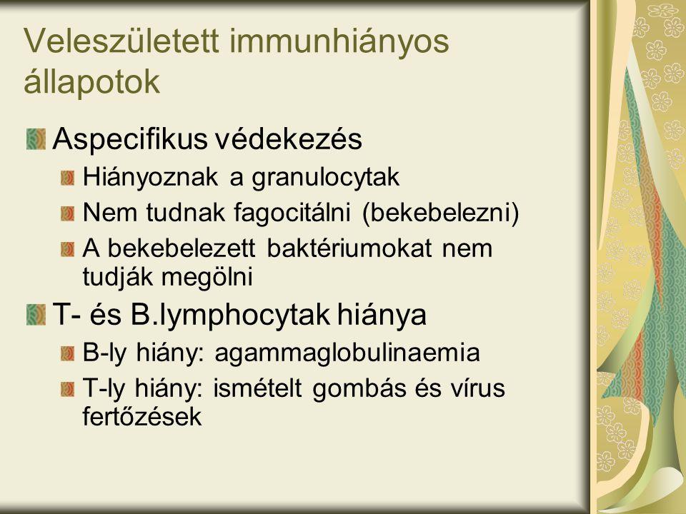 Veleszületett immunhiányos állapotok Aspecifikus védekezés Hiányoznak a granulocytak Nem tudnak fagocitálni (bekebelezni) A bekebelezett baktériumokat nem tudják megölni T- és B.lymphocytak hiánya B-ly hiány: agammaglobulinaemia T-ly hiány: ismételt gombás és vírus fertőzések