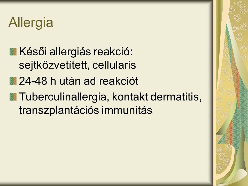 Allergia Késői allergiás reakció: sejtközvetített, cellularis 24-48 h után ad reakciót Tuberculinallergia, kontakt dermatitis, transzplantációs immunitás