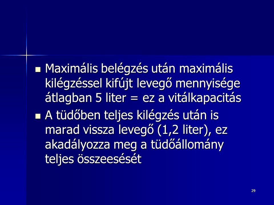29 Maximális belégzés után maximális kilégzéssel kifújt levegő mennyisége átlagban 5 liter = ez a vitálkapacitás Maximális belégzés után maximális kil