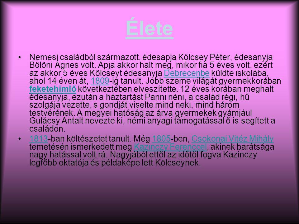Élete Nemesi családból származott, édesapja Kölcsey Péter, édesanyja Bölöni Ágnes volt.