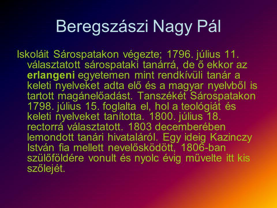 Beregszászi Nagy Pál Iskoláit Sárospatakon végezte; 1796. július 11. választatott sárospataki tanárrá, de ő ekkor az erlangeni egyetemen mint rendkívü