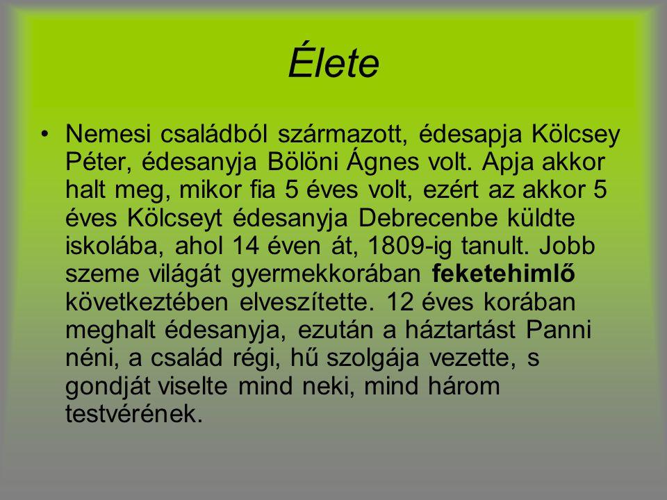 Élete Nemesi családból származott, édesapja Kölcsey Péter, édesanyja Bölöni Ágnes volt. Apja akkor halt meg, mikor fia 5 éves volt, ezért az akkor 5 é