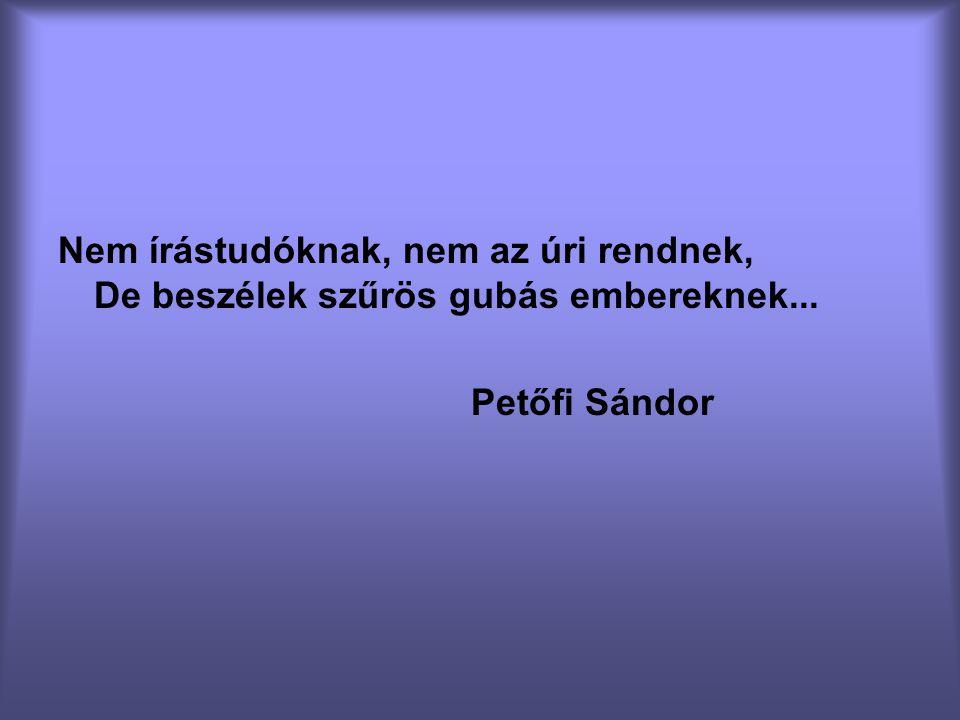 Nem írástudóknak, nem az úri rendnek, De beszélek szűrös gubás embereknek... Petőfi Sándor