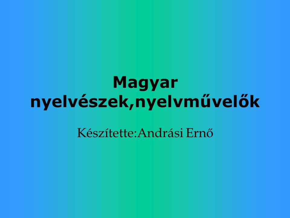 Magyar nyelvészek,nyelvművelők Készítette:Andrási Ernő