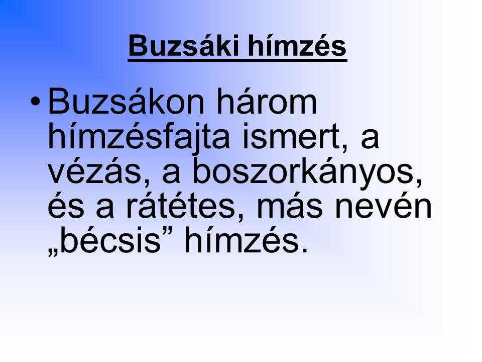"""Buzsáki hímzés Buzsákon három hímzésfajta ismert, a vézás, a boszorkányos, és a rátétes, más nevén """"bécsis hímzés."""