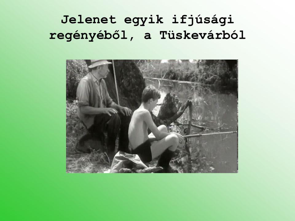 Jelenet egyik ifjúsági regényéből, a Tüskevárból
