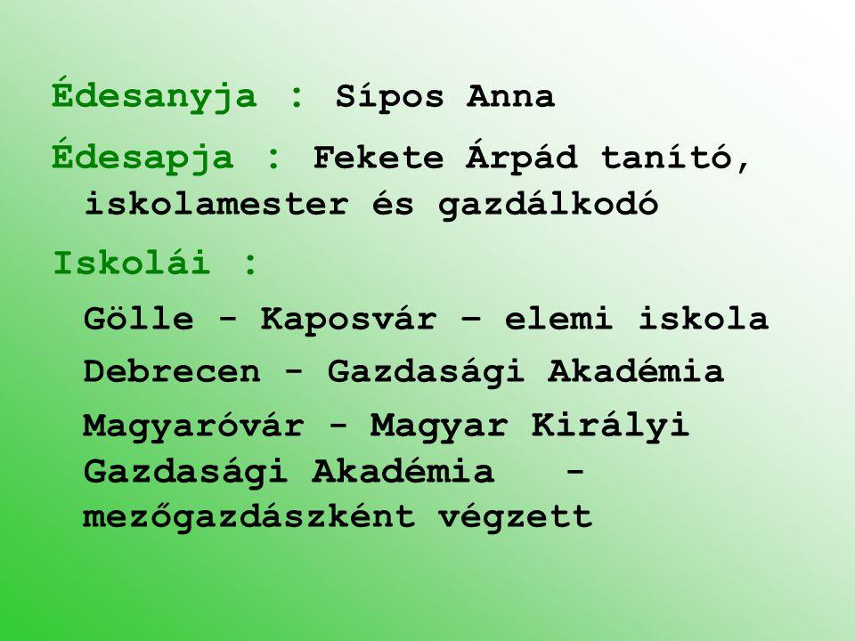Édesanyja : Sípos Anna Édesapja : Fekete Árpád tanító, iskolamester és gazdálkodó Iskolái : Gölle - Kaposvár – elemi iskola Debrecen - Gazdasági Akadé