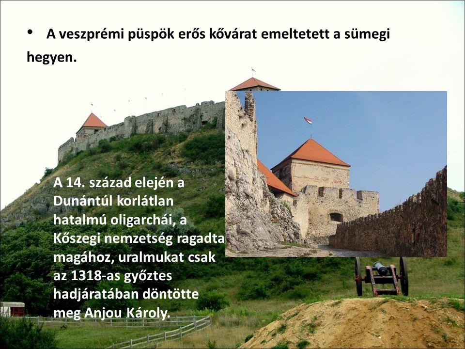 A 14. század elején a Dunántúl korlátlan hatalmú oligarchái, a Kőszegi nemzetség ragadta magához, uralmukat csak az 1318-as győztes hadjáratában döntö