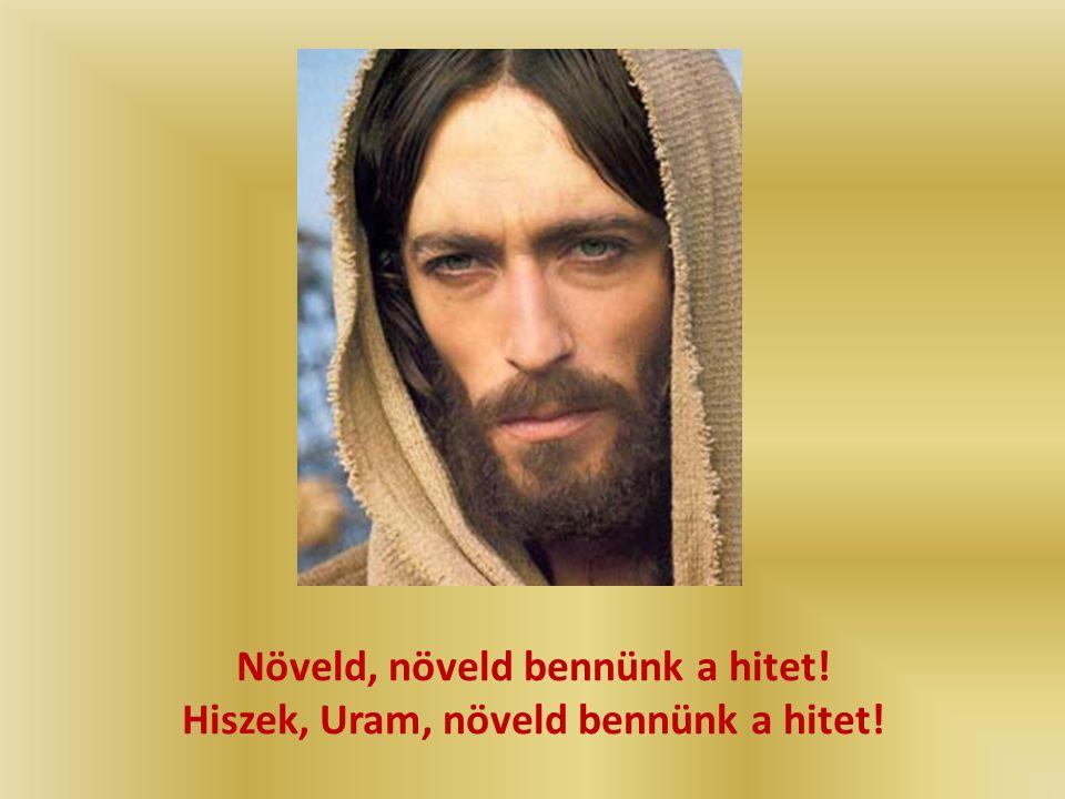 Hiszek, Uram, hiszek! A szegényekkel együtt, akik segítséget várnak ó, Uram, esedezünk: