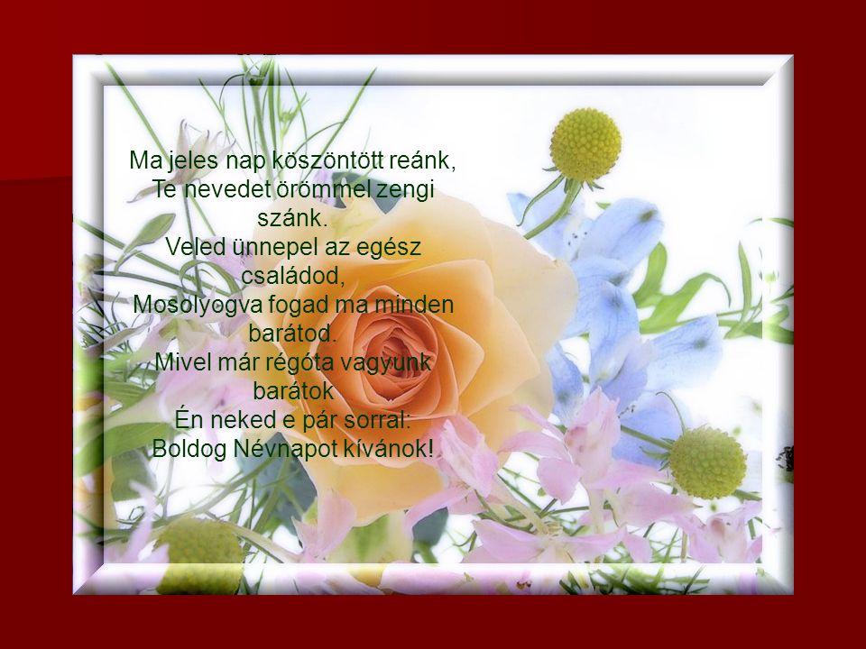 Névnapod van teneked, ez a legszebb ünneped. Rózsa nyíljon utadon, ezt kívánom, barátom!
