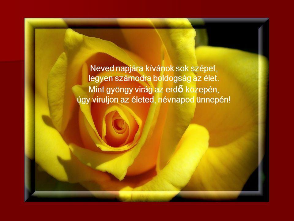 Névnapodra Szeretettel! Kattintásra