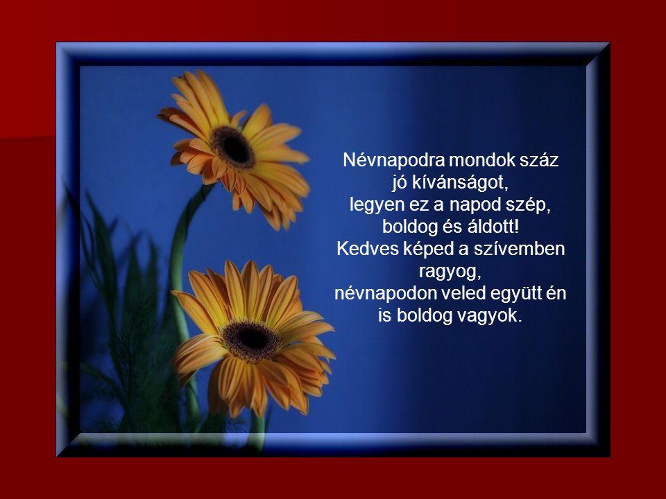 Neved napjára kívánok sok szépet, legyen számodra boldogság az élet. Mint gyöngy virág az erd ő közepén, úgy viruljon az életed, névnapod ünnepén!
