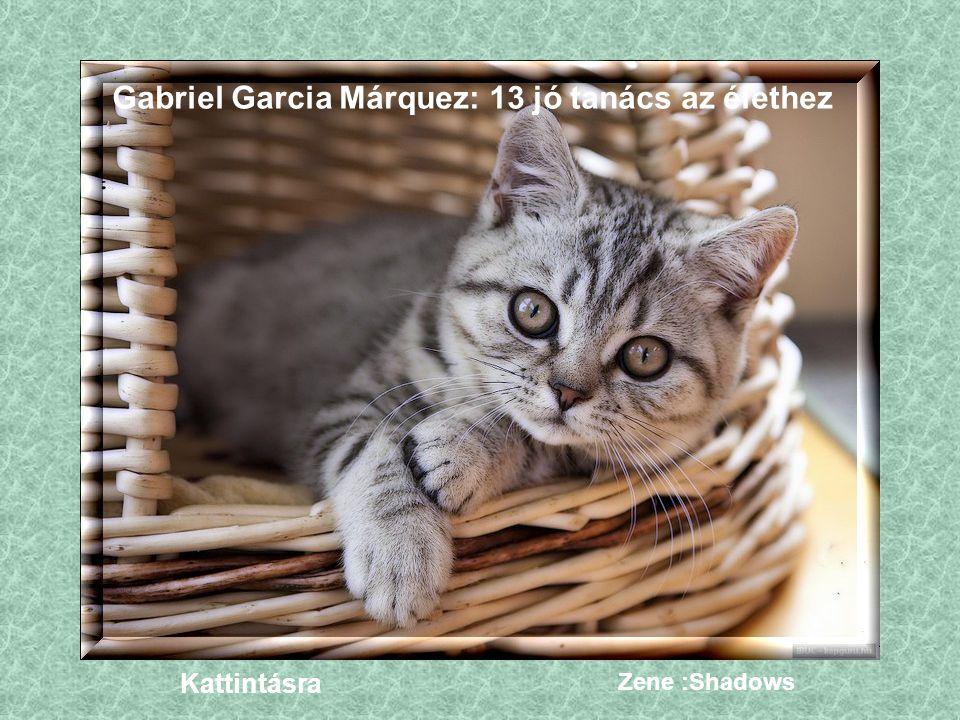 Gabriel Garcia Márquez: 13 jó tanács az élethez Kattintásra Zene :Shadows