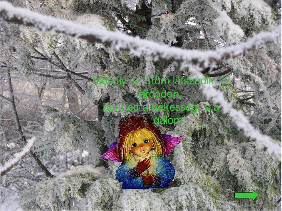 Csillagszóró szikrái hullnak szerteszét, a díszes fa alatt ott a sok-sok ajándék.