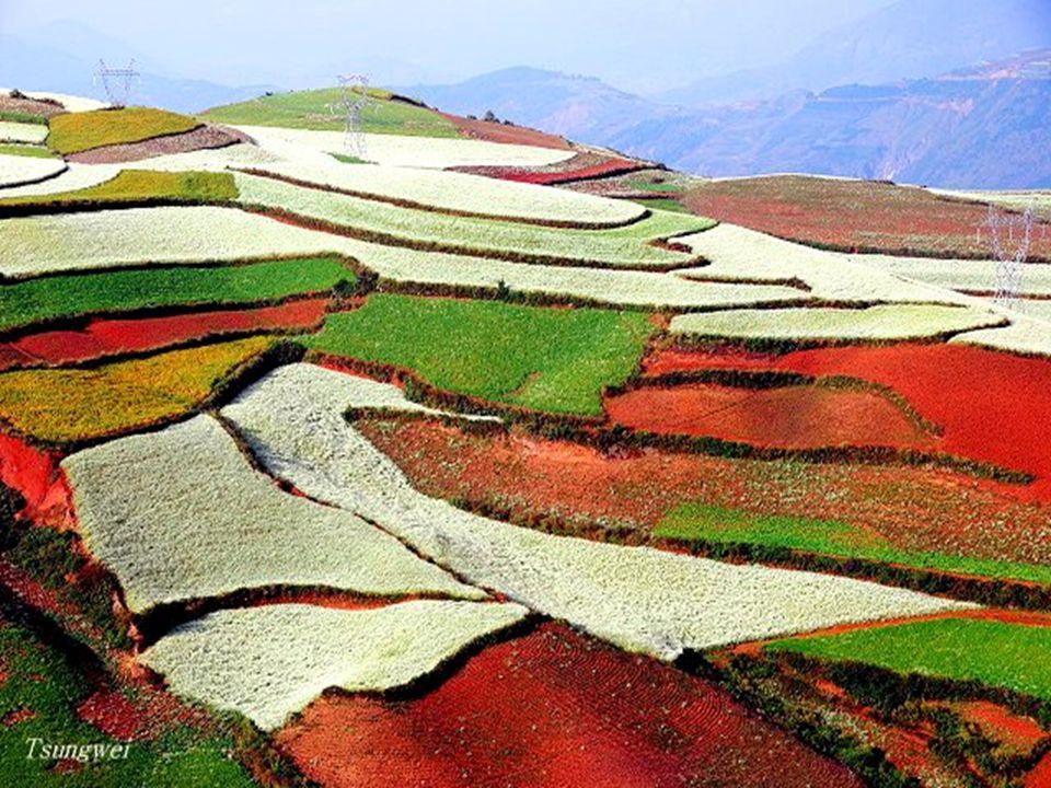 Különböző évszakokban, különböző időpontokban, különböző napfény, másfajta színek.
