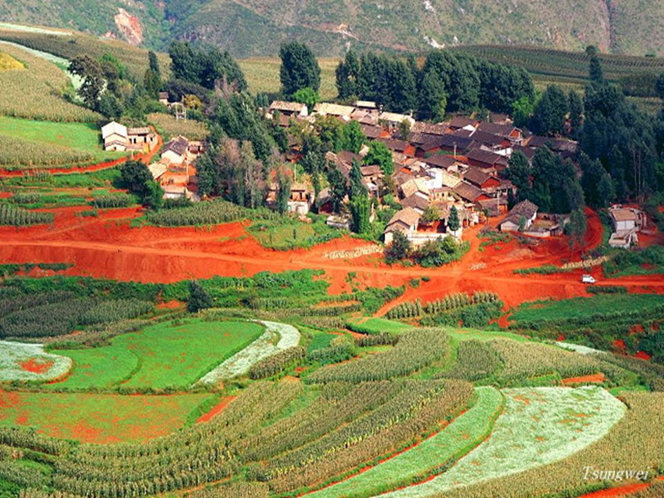 A kivájt terület jól mutatja a talaj vörösségét.