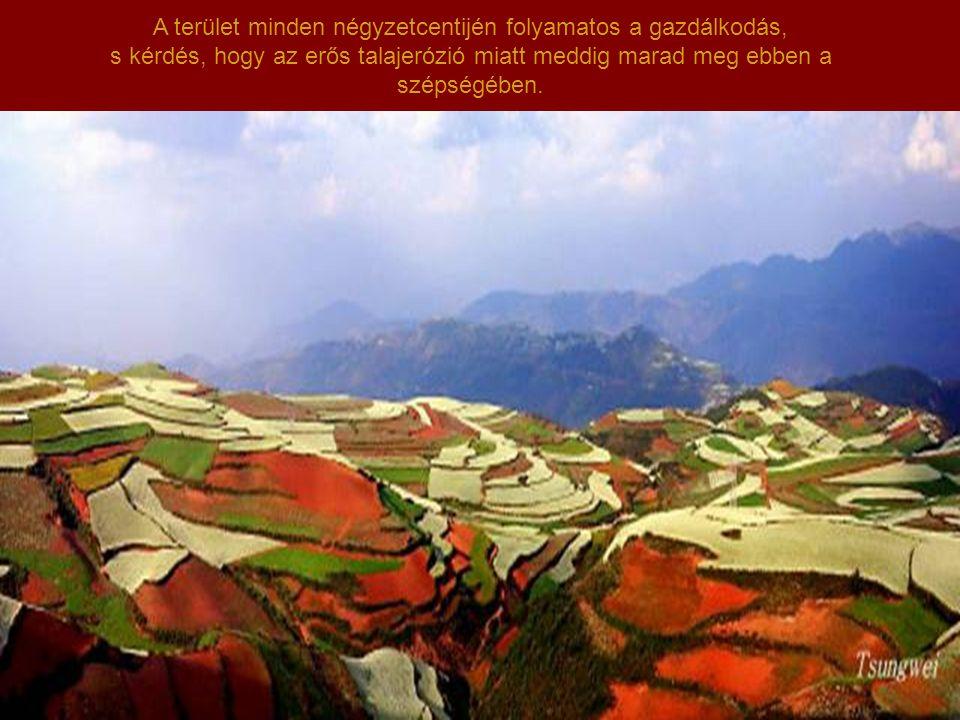 Kínában van egy hely, ahol a talaj vas-oxidokban gazdag, Ez dél-nyugatra található, Yunnan tartományban.