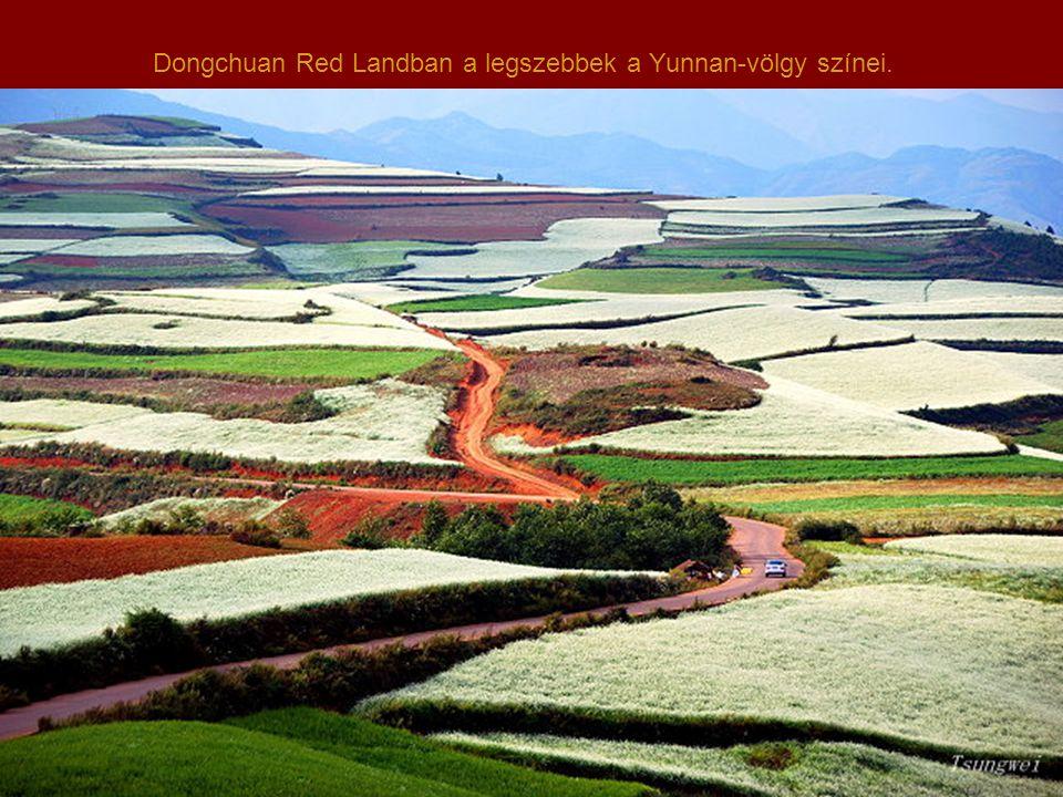 A terület minden négyzetcentijén folyamatos a gazdálkodás, s kérdés, hogy az erős talajerózió miatt meddig marad meg ebben a szépségében.