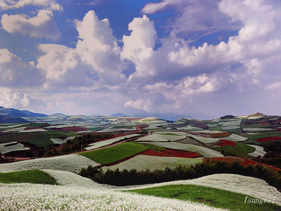 Dongchuan Red Landban a legszebbek a Yunnan-völgy színei.