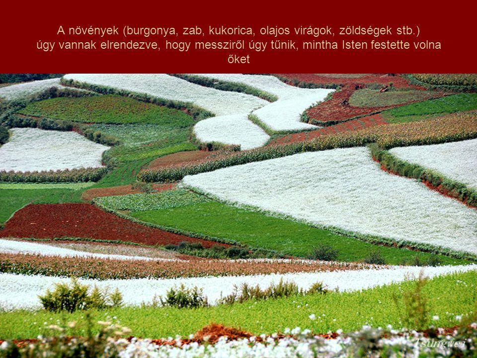 Öt-hat féle színben pompáznak a hegyek-völgyek.