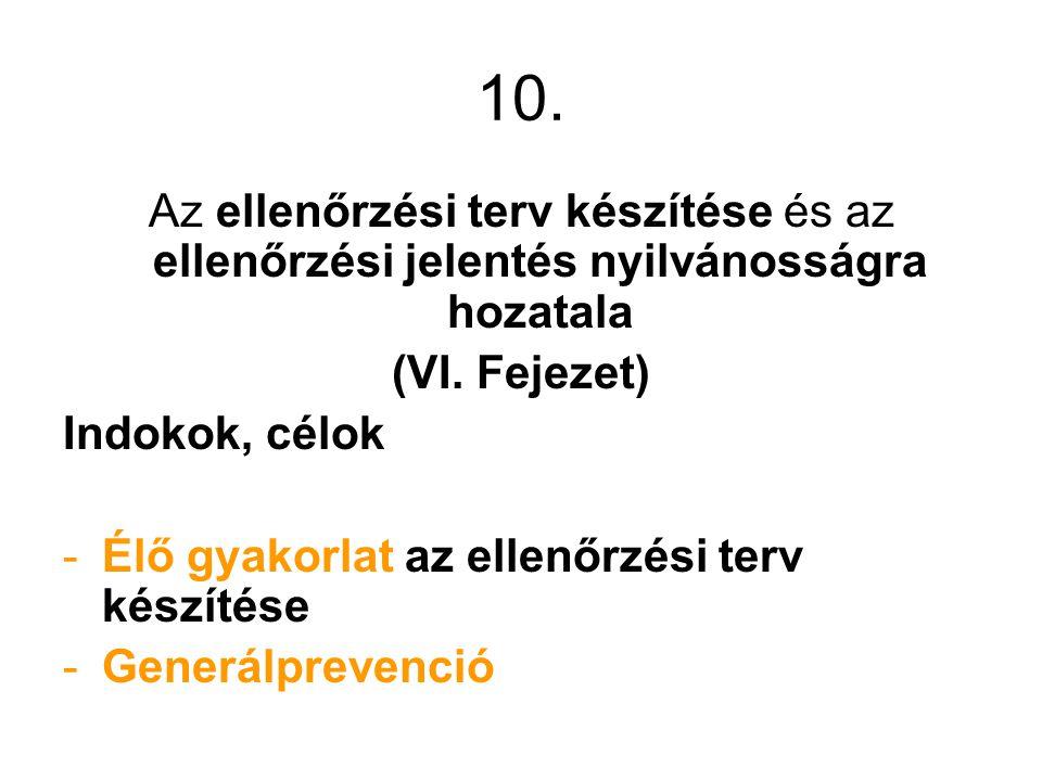 10.Az ellenőrzési terv készítése és az ellenőrzési jelentés nyilvánosságra hozatala (VI.