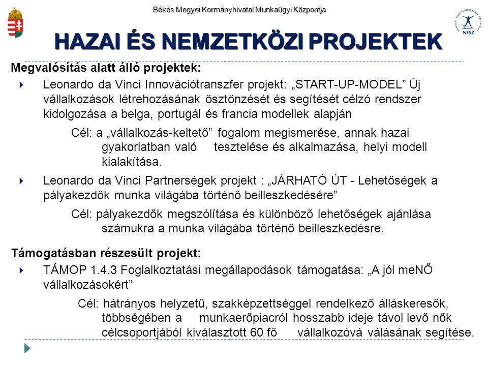 HAZAI ÉS NEMZETKÖZI PROJEKTEK Békés Megyei Kormányhivatal Munkaügyi Központja Megvalósítás alatt álló projektek:  Leonardo da Vinci Innovációtranszfe