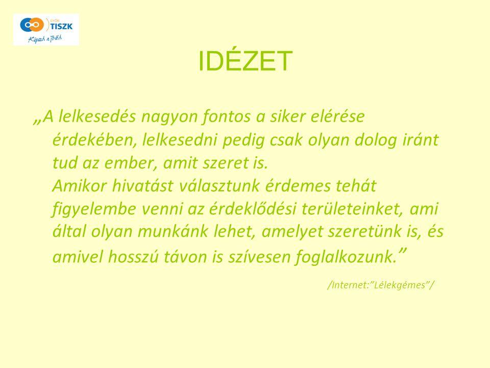 """IDÉZET """" A lelkesedés nagyon fontos a siker elérése érdekében, lelkesedni pedig csak olyan dolog iránt tud az ember, amit szeret is. Amikor hivatást v"""