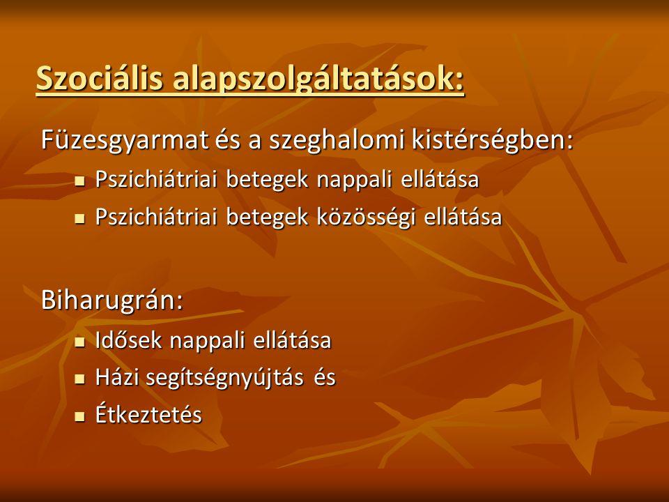 Szociális alapszolgáltatások: Füzesgyarmat és a szeghalomi kistérségben: Pszichiátriai betegek nappali ellátása Pszichiátriai betegek nappali ellátása Pszichiátriai betegek közösségi ellátása Pszichiátriai betegek közösségi ellátásaBiharugrán: Idősek nappali ellátása Idősek nappali ellátása Házi segítségnyújtás és Házi segítségnyújtás és Étkeztetés Étkeztetés