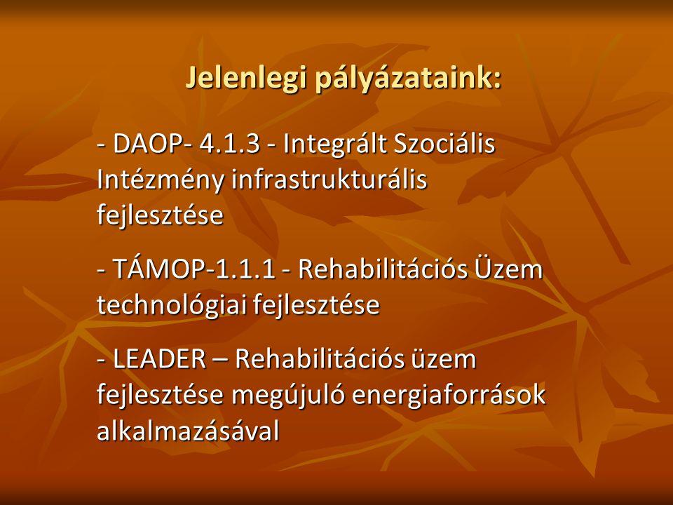 Jelenlegi pályázataink: - DAOP- 4.1.3 - Integrált Szociális Intézmény infrastrukturális fejlesztése - TÁMOP-1.1.1 - Rehabilitációs Üzem technológiai fejlesztése - LEADER – Rehabilitációs üzem fejlesztése megújuló energiaforrások alkalmazásával