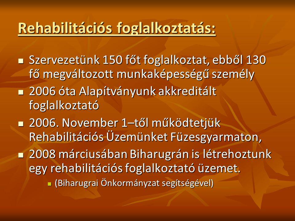 Rehabilitációs foglalkoztatás: Szervezetünk 150 főt foglalkoztat, ebből 130 fő megváltozott munkaképességű személy Szervezetünk 150 főt foglalkoztat,