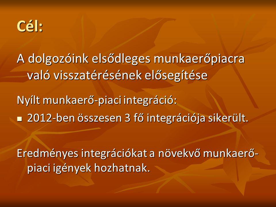 Cél: A dolgozóink elsődleges munkaerőpiacra való visszatérésének elősegítése Nyílt munkaerő-piaci integráció: 2012-ben összesen 3 fő integrációja sikerült.