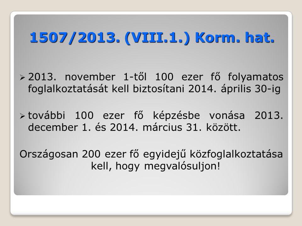 1507/2013.(VIII.1.) Korm. hat.  2013.