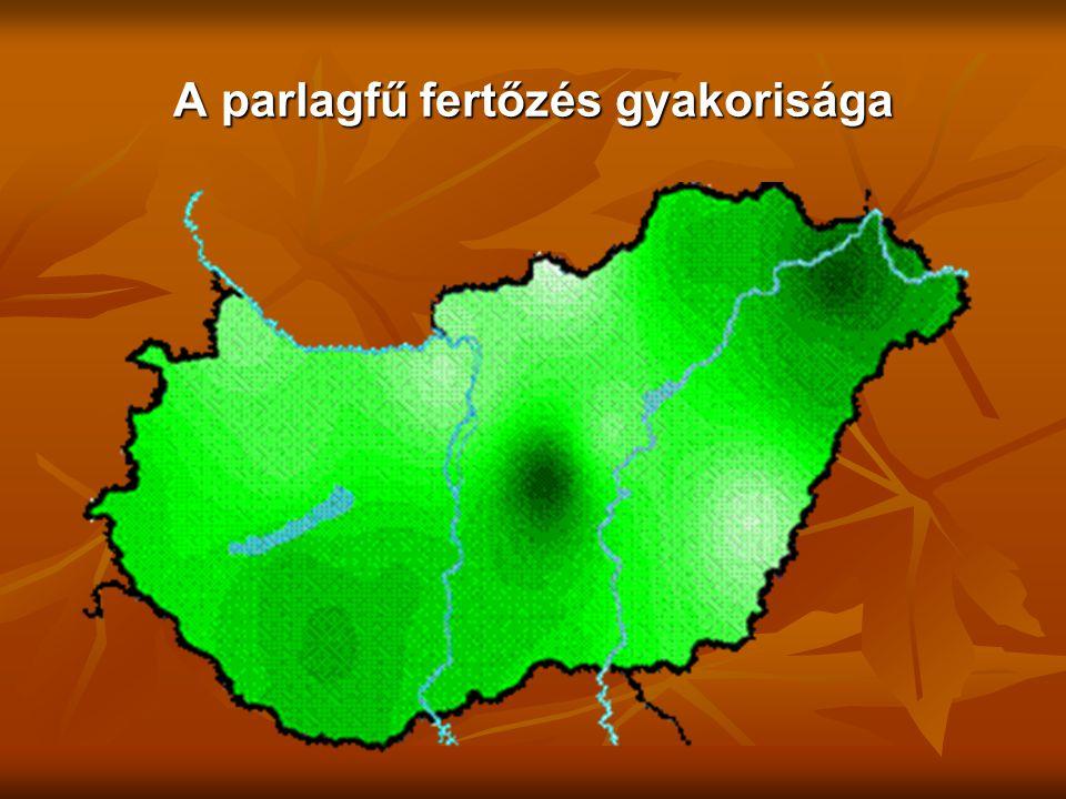 A parlagfű fertőzés gyakorisága