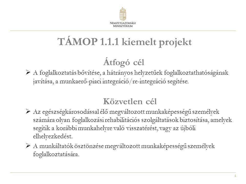 4 TÁMOP 1.1.1 kiemelt projekt Átfogó cél  A foglalkoztatás bővítése, a hátrányos helyzetűek foglalkoztathatóságának javítása, a munkaerő-piaci integráció/re-integráció segítése.