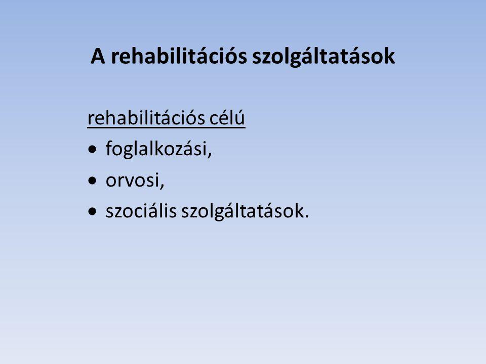 A mentori szolgáltatás keretében biztosítani kell  a rehabilitációs szolgáltatások igénybevétele során történő információnyújtást, az önálló munkába álláshoz szükséges személyes tanácsadást, a beilleszkedéshez történő segítségnyújtást, személyes közreműködést és szükség esetén együttműködést a rehabilitációs szolgáltatást nyújtó szolgáltatókkal, szervezetekkel és személyekkel,  rendszeres kapcsolattartást a rehabilitációs ellátásban részesülő személlyel, amely során figyelemmel kell kísérni a mentális, fizikai és egészségi állapotát, a rehabilitációs tervben foglaltak megvalósulását és közre kell működni az akadályok elhárításában,  tájékoztatási kötelezettség teljesítését a kirendeltség felé, ha a rehabilitációs tervben foglaltak megvalósulását ellehetetlenítő körülmény merült fel, vagy a rehabilitációs terv módosítása vált szükségessé,  közreműködést a rehabilitációs terv módosításában.