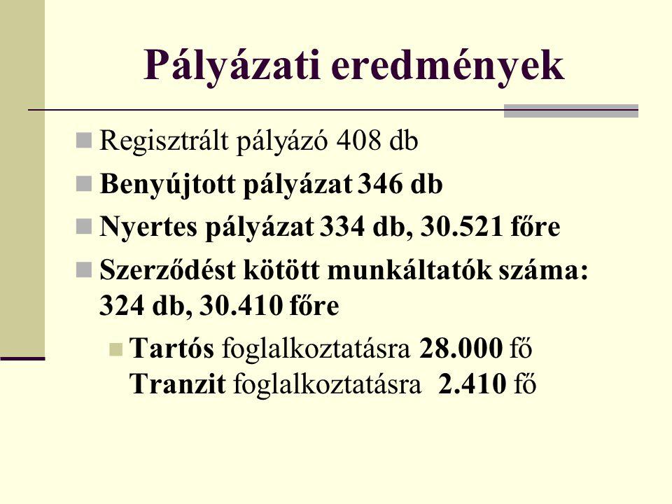 Pályázati eredmények Regisztrált pályázó 408 db Benyújtott pályázat 346 db Nyertes pályázat 334 db, 30.521 főre Szerződést kötött munkáltatók száma: 3