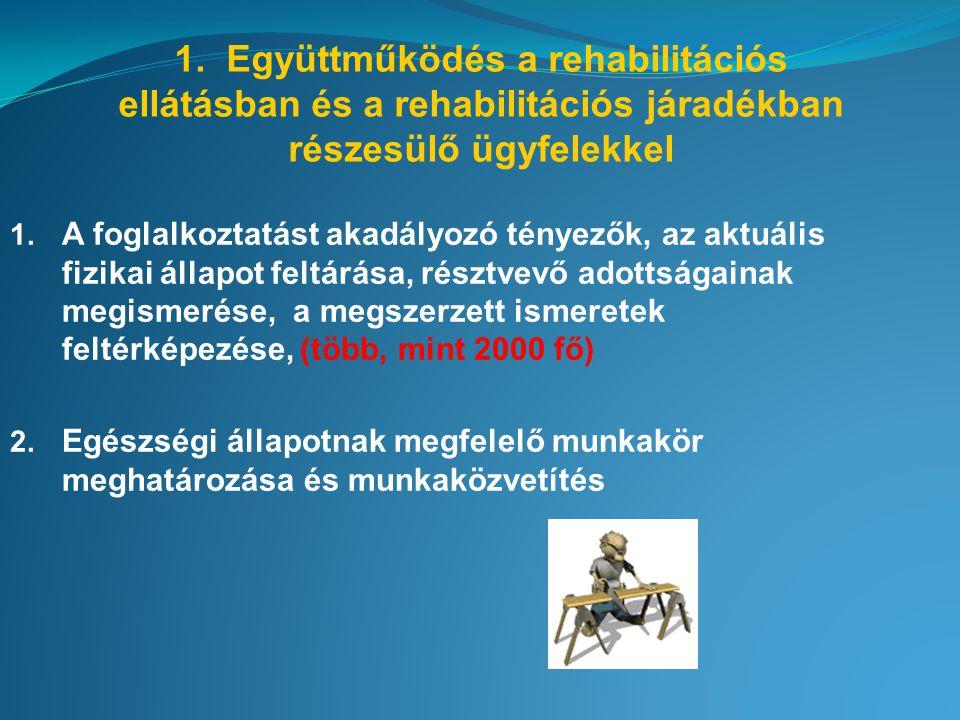 1. Együttműködés a rehabilitációs ellátásban és a rehabilitációs járadékban részesülő ügyfelekkel 1. A foglalkoztatást akadályozó tényezők, az aktuáli