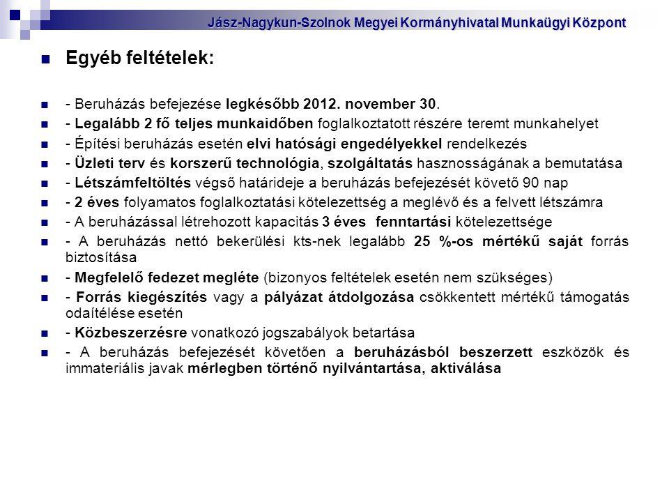 Egyéb feltételek: - Beruházás befejezése legkésőbb 2012. november 30. - Legalább 2 fő teljes munkaidőben foglalkoztatott részére teremt munkahelyet -
