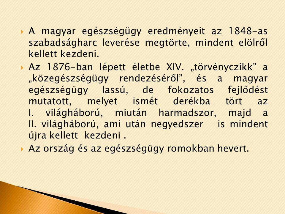  A tisztiorvoslás és a magyar közegészségügy változásainak megújulásának trendjét az ápolás szakfelügyelet is követi.