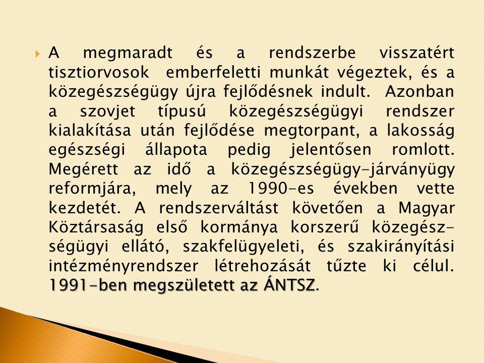1991-ben megszületett az ÁNTSZ  A megmaradt és a rendszerbe visszatért tisztiorvosok emberfeletti munkát végeztek, és a közegészségügy újra fejlődésnek indult.