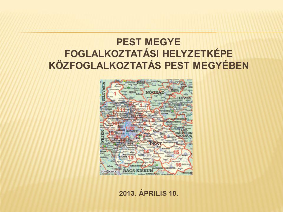 PEST MEGYE FOGLALKOZTATÁSI HELYZETKÉPE KÖZFOGLALKOZTATÁS PEST MEGYÉBEN 2013. ÁPRILIS 10.