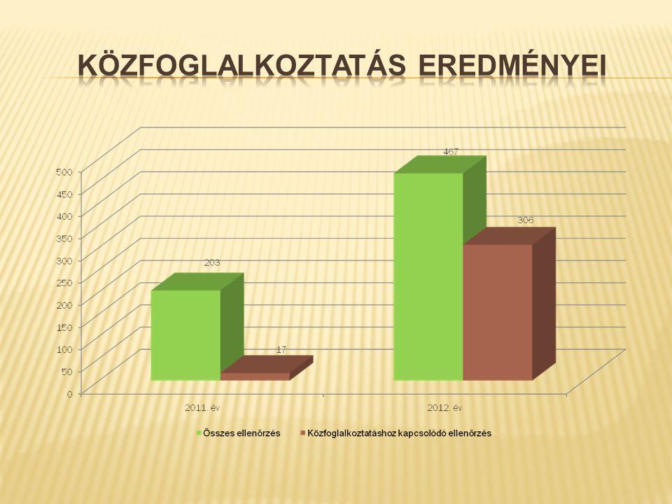 2013.ÉVI KÖZFOGLALKOZTATÁSI PROGRAMOK 1.