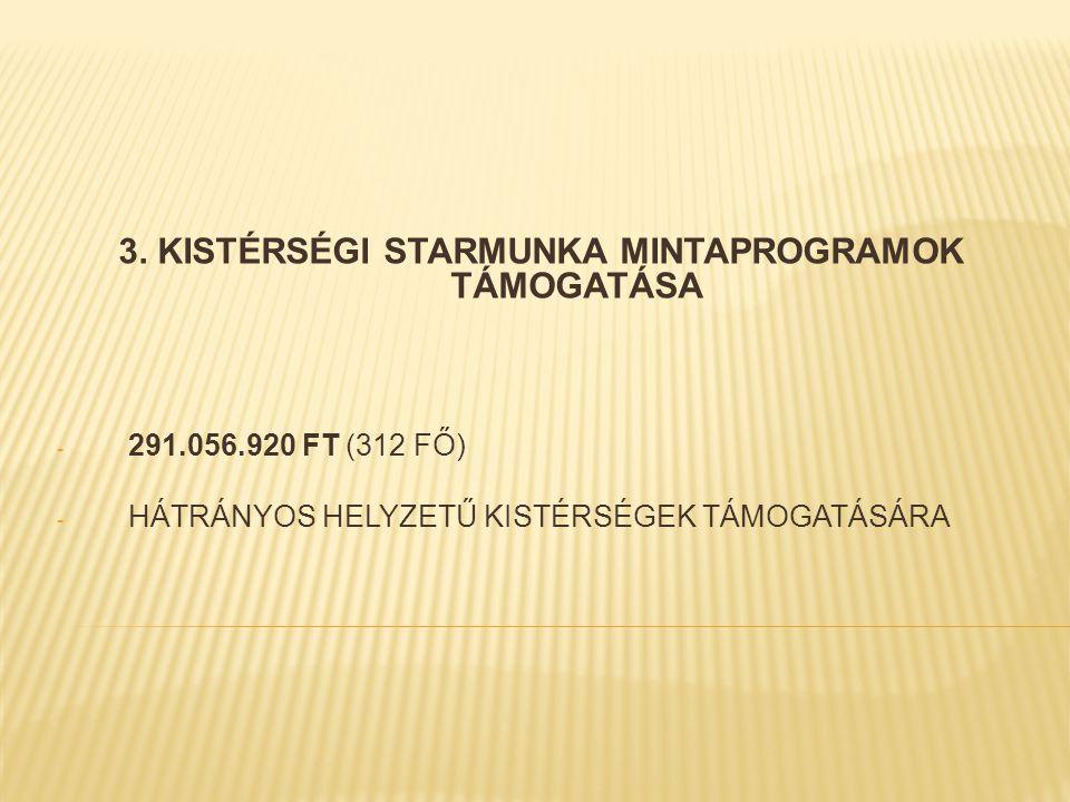 3. KISTÉRSÉGI STARMUNKA MINTAPROGRAMOK TÁMOGATÁSA - 291.056.920 FT (312 FŐ) - HÁTRÁNYOS HELYZETŰ KISTÉRSÉGEK TÁMOGATÁSÁRA
