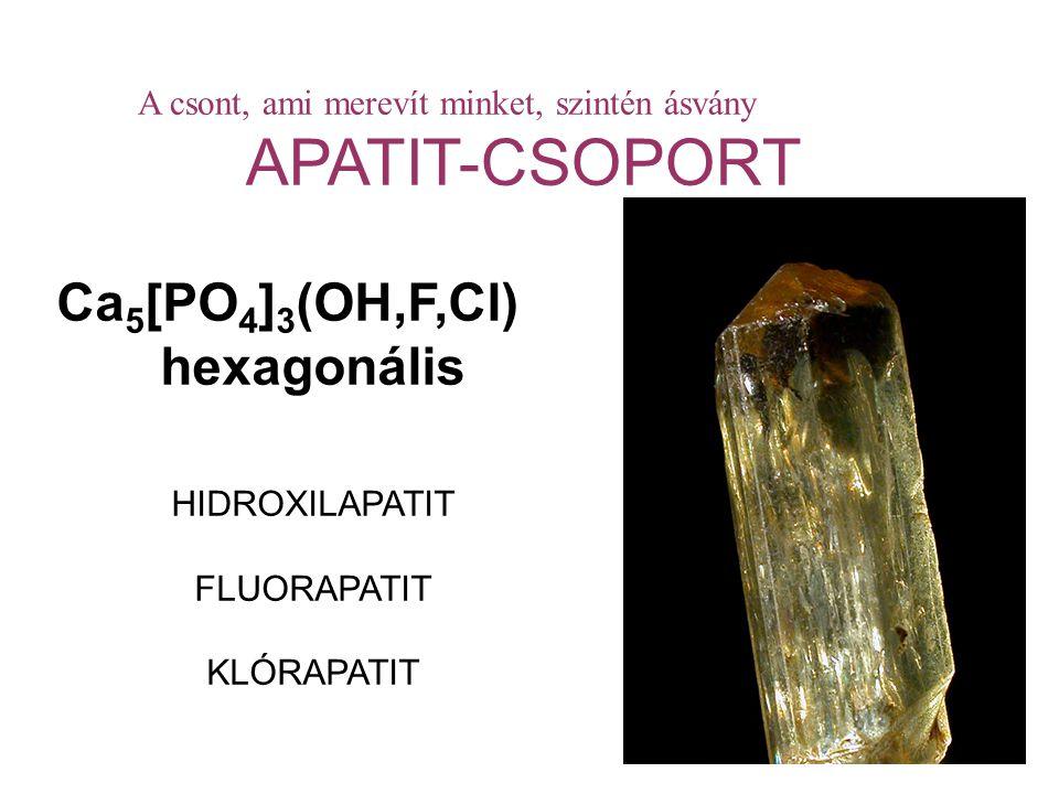 A csont, ami merevít minket, szintén ásvány APATIT-CSOPORT Ca 5 [PO 4 ] 3 (OH,F,Cl) hexagonális HIDROXILAPATIT FLUORAPATIT KLÓRAPATIT