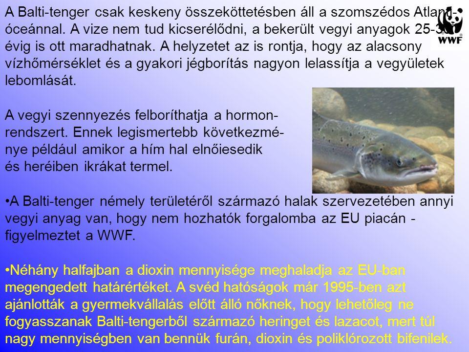 Vegyi anyag a Balti-tengerben élő halak szervezetében A WWF felmérés kimutatta, hogy több halfaj, (mint például az atlanti lazac, a tőkehal, a rombuszhal) populációinak szaporodási gondjai vannak - nagy valószínűséggel a vegyi anyagok miatt.