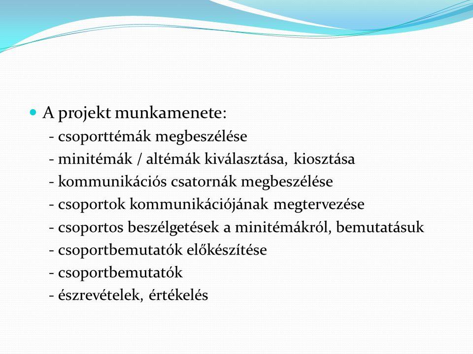 A projekt munkamenete: - csoporttémák megbeszélése - minitémák / altémák kiválasztása, kiosztása - kommunikációs csatornák megbeszélése - csoportok ko