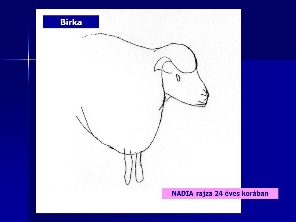 Birka NADIA rajza 24 éves korában
