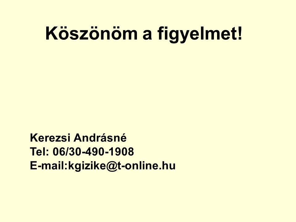 Köszönöm a figyelmet! Kerezsi Andrásné Tel: 06/30-490-1908 E-mail:kgizike@t-online.hu